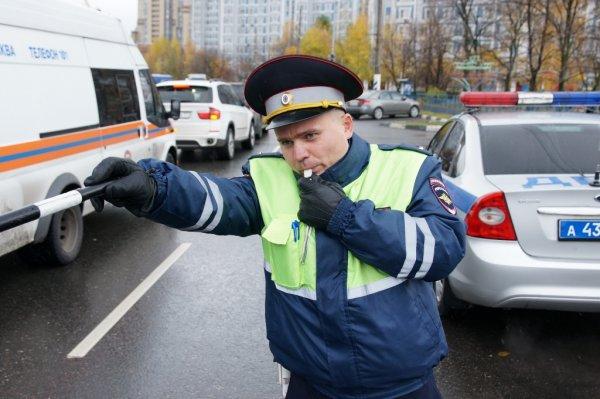 В Зеленограде задержали мужчину, ударившего полицейского за отказ сделать селфи