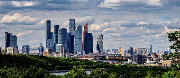 Американцев озадачило отсутствие пустых полок в магазинах Москвы