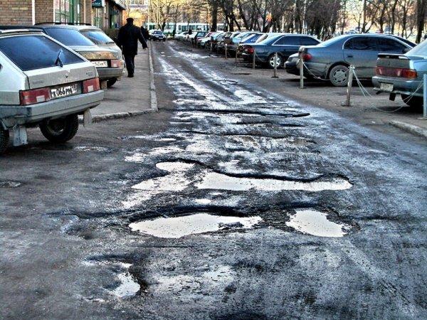 Воронежец рассказал, как отремонтировать дороги при помощи слона и биткоинов
