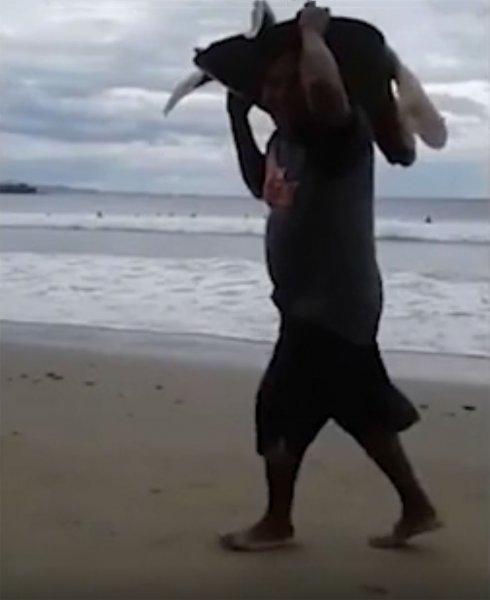 В Никарагуа сняли на камеру похищение морской черепахи на пляже