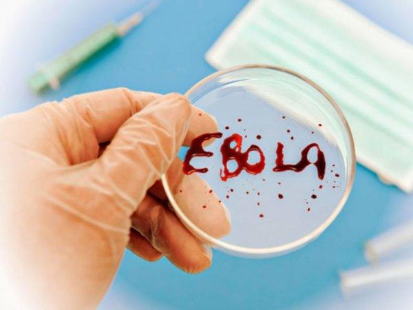 Глава ВОЗ: Мы пока не в состоянии остановить вспышку Эболы в Конго