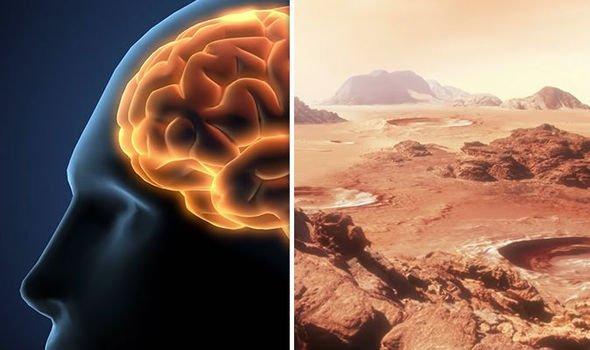«Путешественник во времени»: «Богоподобные» люди полетят на Марс в 2030 году
