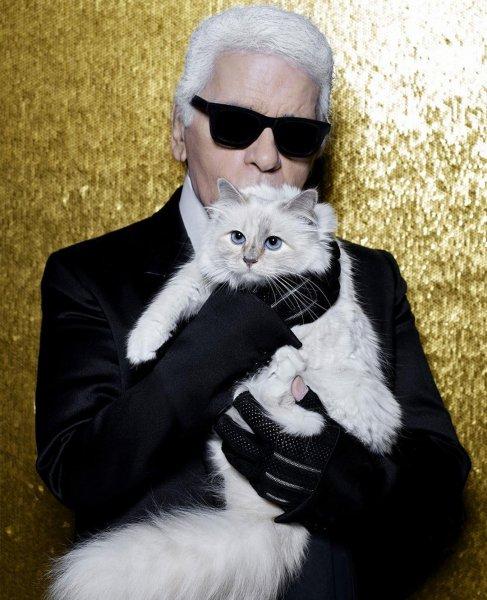 Умер Карл Лагерфельд: Люди со всего мира выражают соболезнования кошке модельера